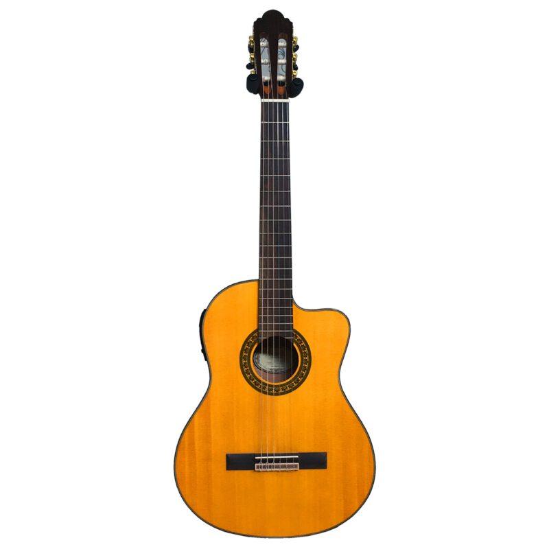 گیتار کلاسیک اندرس مدل EC3960CSE