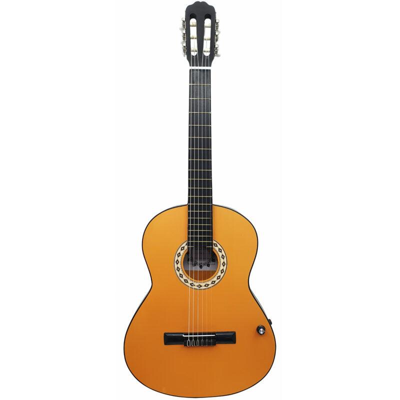 گیتار کلاسیک ایران ساز مدل F800-A1