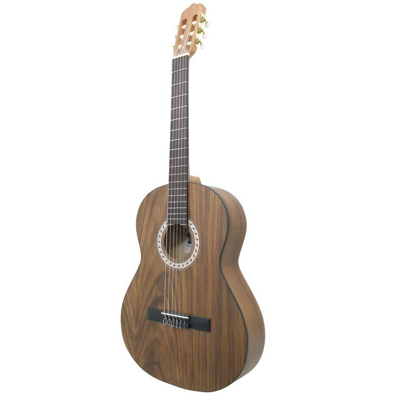 گیتار کلاسیک ایران ساز مدل C750