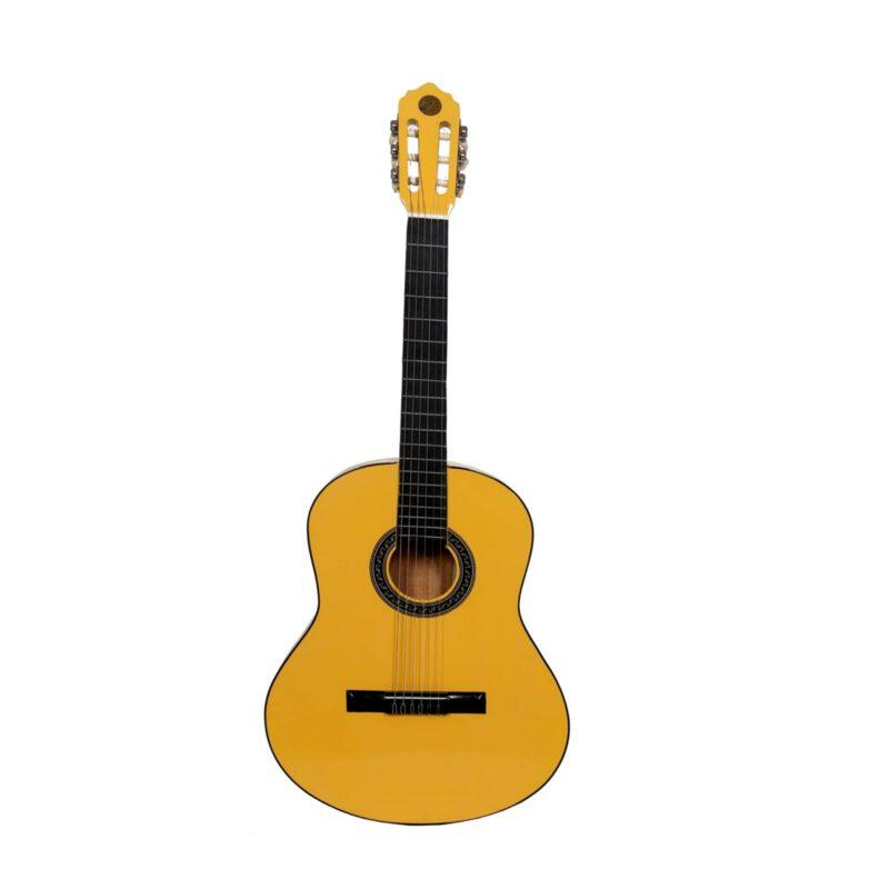 گیتار کلاسیک عروج کد A01